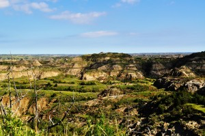 Annual Theodore Roosevelt National Park Photo Contest Set to Begin